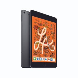 "iPad Mini 7.9"""
